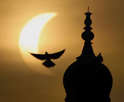 APTOPIX Pakistan Asia Eclipse