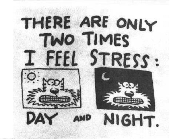 stress day and night