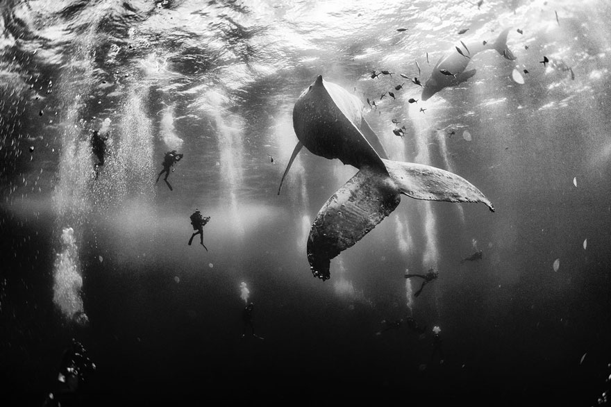 national-geographic-traveler-photo-contest-2015-8